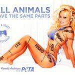 Pamela Anderson displays her parts for PETA