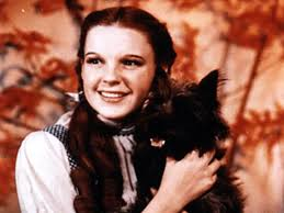 Image of Dorothy of The Wizard of Oz.
